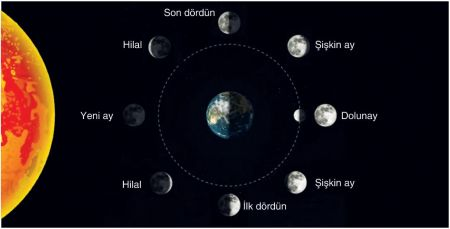 Ay'ın Evreleri