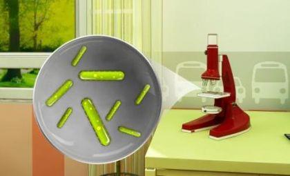 Mikroskobik Canlılar Mikroskopta Görülebilir