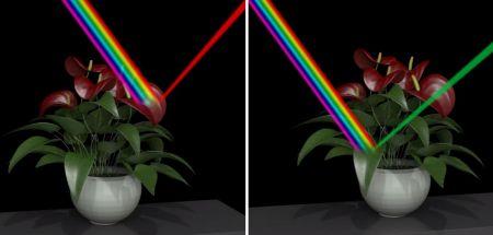 Işık Altında Cisimler Yansıttıkları Işığın Renginde Görünürler