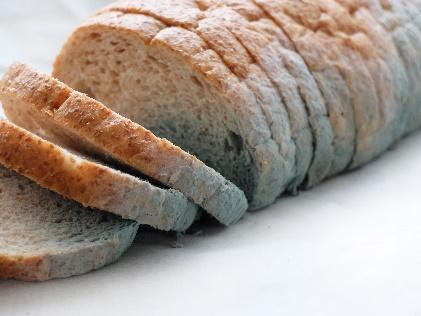 Ekmeğin Küflenmesi Kimyasal Bir Değişimdir