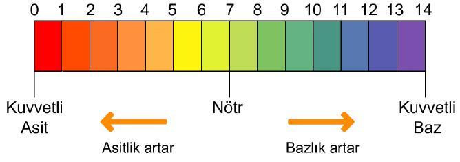 pH Ölçeği - Asitlik ve Bazlık Değerleri