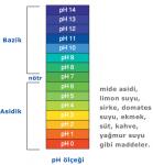 pH Skalası - Ölçeği