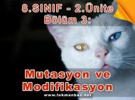 Mutasyon ve Modifikasyon