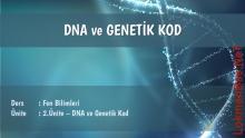 Bölüm 1: DNA ve Genetik Kod Ders Notu - Konu Özeti 2
