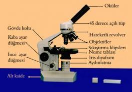 Mikroskobun Kısımları-Bölümleri
